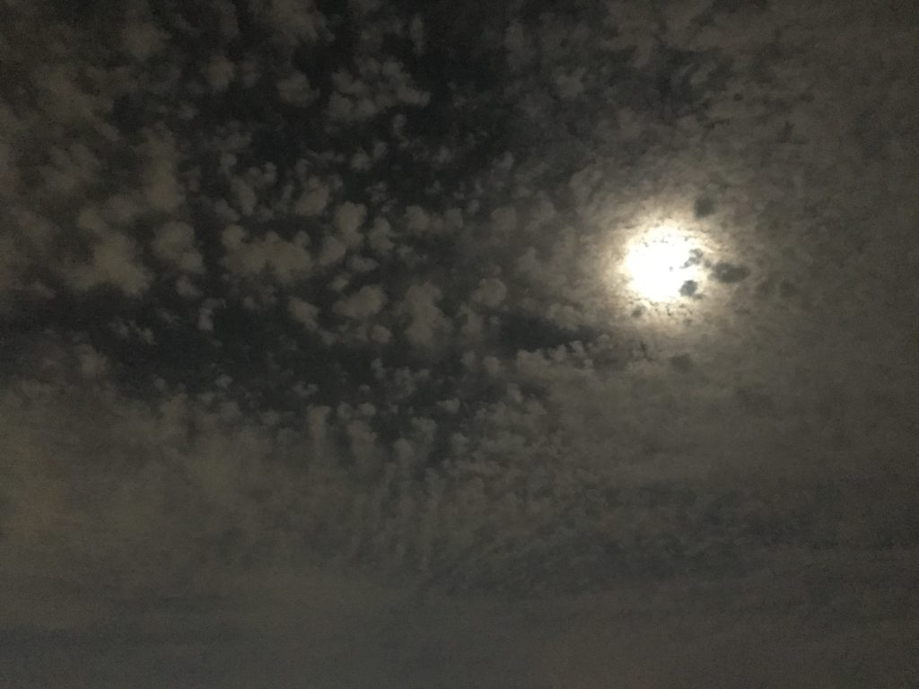 【2019/11/10】泉大津は月が綺麗でした
