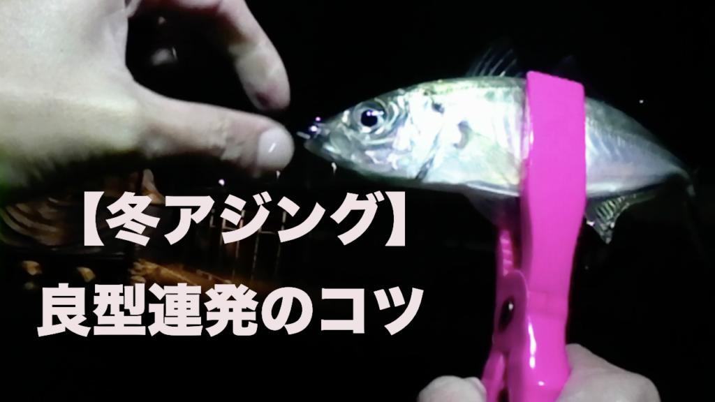 【アジング】冬パターン釣り方紹介【2019/12/30】釣りおさめで泉大津アジング