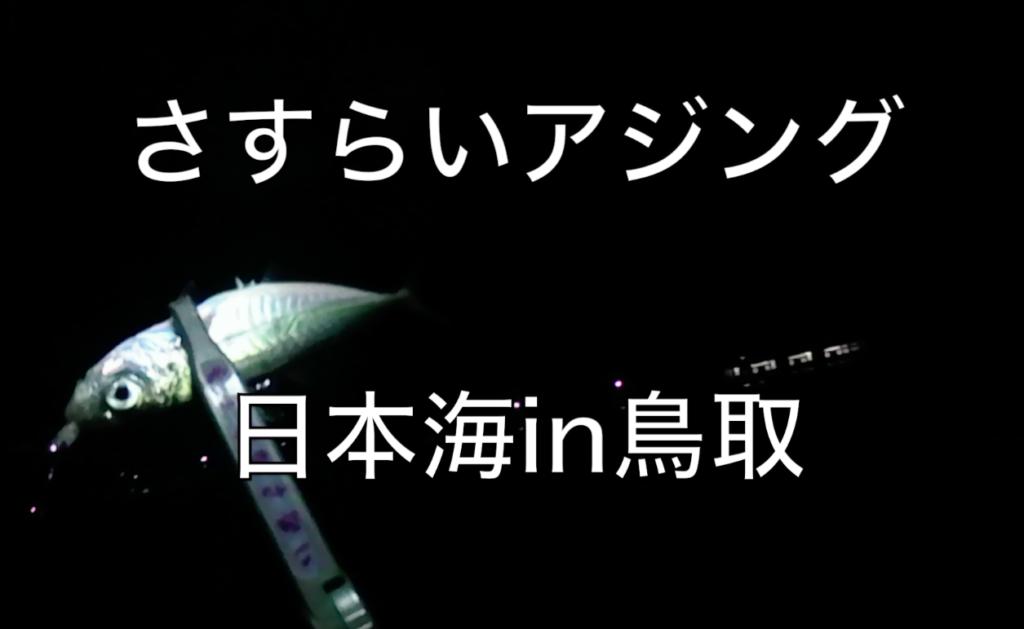 【鳥取県岩美町】真冬の日本海アジングの旅④
